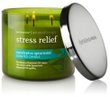 Eucalyptus Spearmint Candle from Bath & Bodyworks
